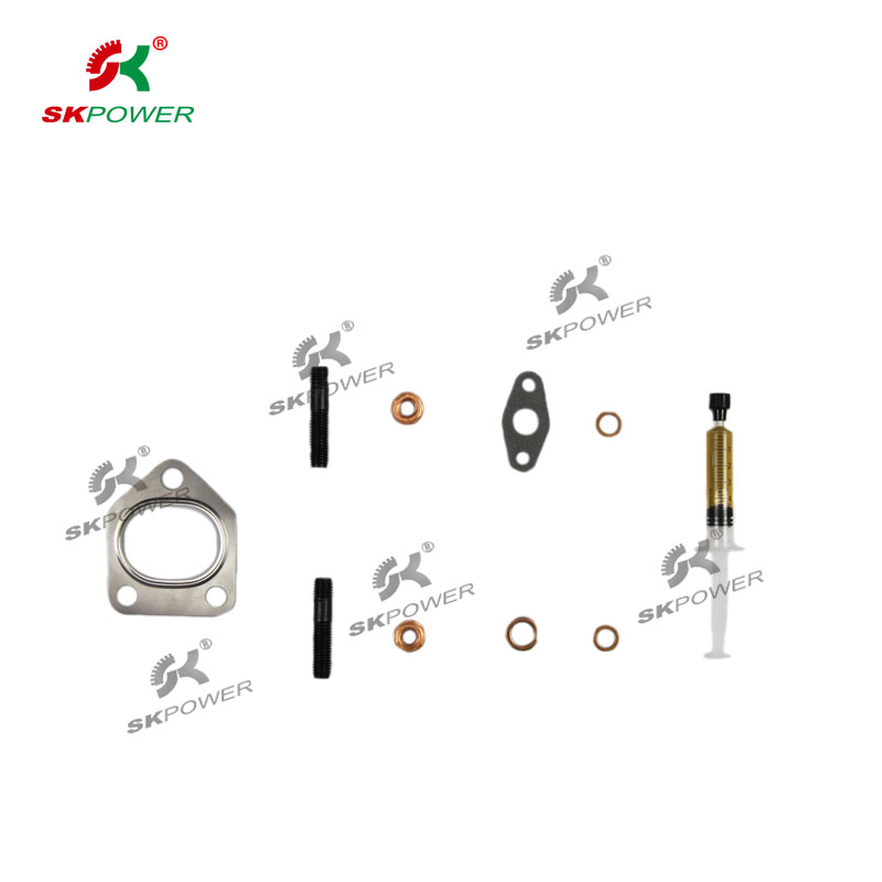 Gasket Kits770154